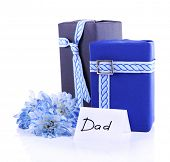 Two gift boxes with blue flower and card for Dad on white background