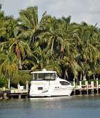 Yacht Near Lush Foliage