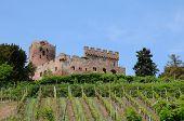 The Castle Of Kintzheim In Alsace