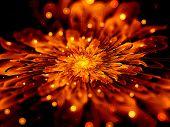 Fiery Fractal Flower