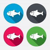 picture of long-fish  - Fish sign icon - JPG
