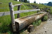 foto of trough  - Old wooden trough filled with water standing at wooden fence - JPG