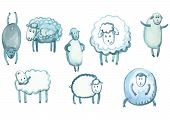 set of sheep in different poses