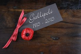 foto of lapel  - Australian Gallipoli Centenary WWI April 1915 tribute with red poppy lapel pin badge on dark recycled wood background - JPG
