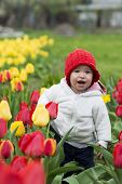 stock photo of gathering  - Adorable toddler girl gathering tulips in the garden - JPG