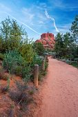picture of butts  - View of the famous Bell Rock at the Courthouse Butte loop in Sedona Arizona AZ an American landmark - JPG