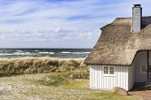 image of dune grass  - Picture of the coast of the Baltic Sea with dune grass house and sea in the background Germany - JPG