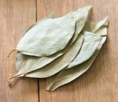 picture of bay leaf  - dry bay leaves on a wooden background  - JPG