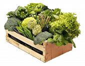 pic of escarole  - Wooden box with assorted green vegetables isolated on white - JPG