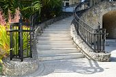 picture of stairway  - Coral stone stairway with Iron railings with palm tree images on the top - JPG