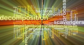 stock photo of decomposition  - Background text pattern concept wordcloud illustration of decomposition glowing light - JPG