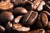Coffee Beans Background V2