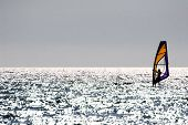 Windsurfer floating across the sea