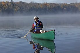 foto of cockapoo  - Man Paddling a Canoe on a Lake in Autumn with a Small White Dog in the Bow  - JPG