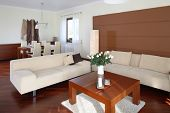foto of scant  - Modern living room - JPG