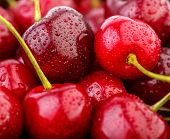 Cherries Background. Isolated Cherries. Cherry Fruits Isolated On White Background With Clipping Pat poster