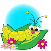 stock photo of grub  - Grub on leaves with flowers  - JPG