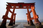 torii gate at miyajima japan
