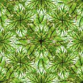 Stylized Nature Seamless Pattern Design poster