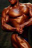 Bodybuilder Torso