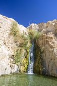 waterfall in an oasis in the Judea dessert (Ein Gedi Nature Reserve, David spring, lower waterfall) Israel