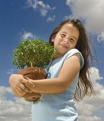 girl holding small tree against cloudy blue sky