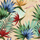 Exotic Botanical Wallpaper Multicolor Realistic Flat Vector Tropical Jungle Flowers Bird Of Paradise poster