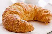 frischen croissant