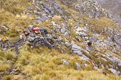 foto of workhorses  - Mule train carrying loads in high mountains of Cordillera Huayhuash Andes Peru South America - JPG
