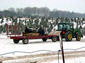 Catching A Ride On Christmas Tree Farm