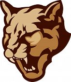 image of cougar  - Graphic Mascot Vector Image of a Cougar Head - JPG