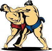 Sumo Wrestler Grappling