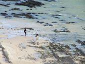 Lady Walking Dog On Beach