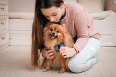 Teenage Girl With A Dog Breed Spitz Rejoices With A Pet At Home On The Floor. Care And Training Of A poster
