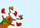 Funny Cartoon Deer