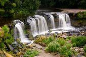 Small waterfall behind green plants