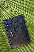 Bible And Palm Leaf