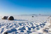 snowy hay bales near farm