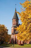 Kant der Kathedrale im Herbst. Kaliningrad, Russland