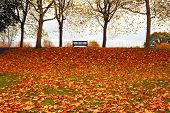 Autumn in Colchester Essex UK