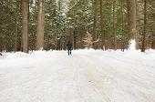 Man Walking On A Snowy Road