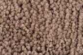 Brown Carpet