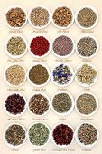 stock photo of wiccan  - Medicinal herb selection also used in witches magical potions in white porcelain bowls with titles  over mottled handmade paper background - JPG