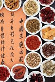 Chinese herbal medicine selection with mandarin calligraphy script. Translation describes the functions to increase the bodys ability to maintain body and spirit health and balance energy.
