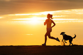 picture of working-dogs  - Woman and dog running free on beach on golden sunset - JPG