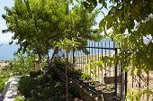 stock photo of mezcal  - view sea from garden of resort in Izmir - JPG