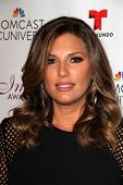 LOS ANGELES - AUG 1:  Daisy Fuentes at the Imagen Awards at the Beverly Hilton Hotel on August 1, 20