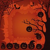 Halloween landscape, pumpkins, tree and spider