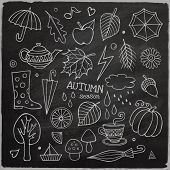 Vector set of different hand drawn autumn elements
