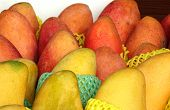 Ripe Red And Yellow Mangoes For Sale